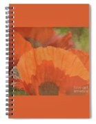 For The Love Of Poppy Spiral Notebook