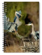 For The Nest, Honey Spiral Notebook