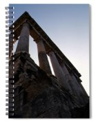 For The Roman Gods Spiral Notebook
