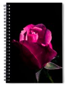 For You My Dear Spiral Notebook