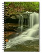 Forbes State Forest Cole Run Cave Falls Spiral Notebook