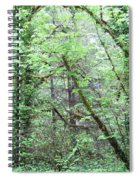 Forest 3 Spiral Notebook