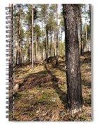 Forest Next Summer After A Fire Spiral Notebook