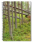 Forest After Storm - Fall Pines In Wild Forest Spiral Notebook