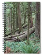 Forest And Ferns Spiral Notebook