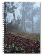 Forest And Fog In Serra Da Estrela Spiral Notebook