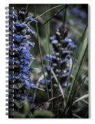 Forest Blues Spiral Notebook