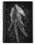 Forest Botanicals In Black And White Spiral Notebook