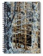 Forest Calm Spiral Notebook