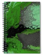 Forest Canopy Spiral Notebook