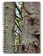 Forest Corrosion Bark Spiral Notebook