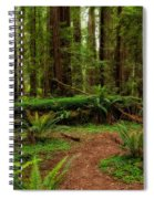 Forest Court Spiral Notebook