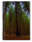Forest Spiral Notebook