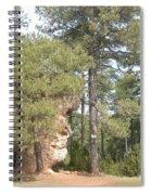 Forest Face Spiral Notebook