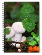 Forest Fairy Tale Spiral Notebook