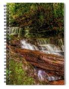 Forest Falls Spiral Notebook