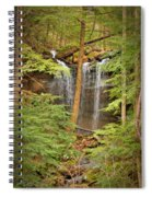Forest Falls Spiral Notebook