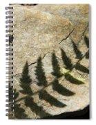 Forest Fern Shadows Spiral Notebook