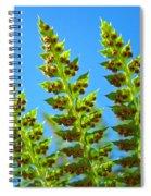 Forest Ferns Art Prints Blue Sky Botanical Baslee Troutman Spiral Notebook