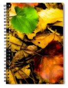 Forest Floor Spiral Notebook