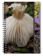 Forest Floor Spiral Notebook