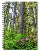 Forest Floor Of Hoh Rain Forest Spiral Notebook
