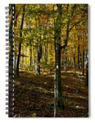 Forest Floor Two Spiral Notebook