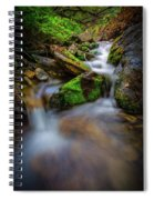 Forest Flow Spiral Notebook