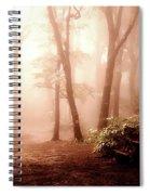 Forest Fog Spiral Notebook