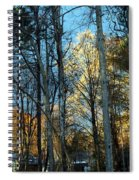 Forest For The Trees Spiral Notebook