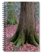 Forest Foundation Spiral Notebook