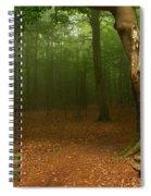 Forest Light 2 Spiral Notebook