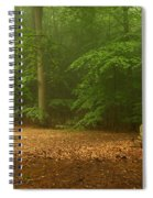 Forest Light 4 Spiral Notebook