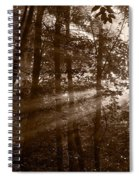 Forest Mist B And W Spiral Notebook