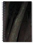 Forest Nightscape Spiral Notebook