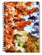 Forest Of Fall Colors Spiral Notebook