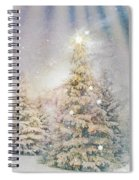 Forest Of Trees In The Light Spiral Notebook