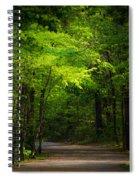 Forest Path Spiral Notebook
