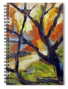 Forest Path Spiral Notebook