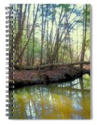 Forest Pool Spiral Notebook