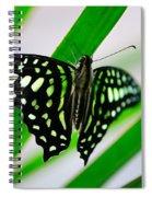 Forest Queen Spiral Notebook