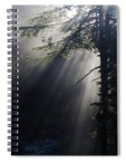 Forest Rays Spiral Notebook