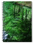 Forest Reflection Spiral Notebook
