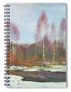Forest River In Winter Spiral Notebook