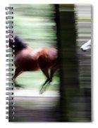 Forest Run Spiral Notebook