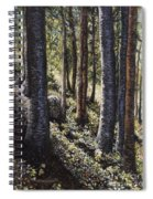 Forest Shadows Spiral Notebook