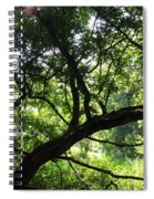 Forest Silhouette Spiral Notebook