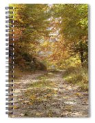 Forest Stone Path Spiral Notebook