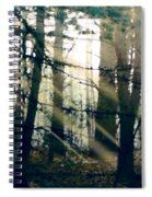 Forest Sunrise Spiral Notebook