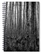 Forest Thru The Trees Spiral Notebook